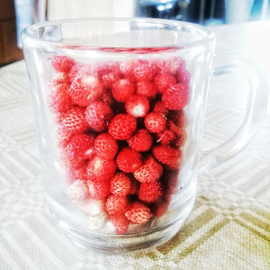 Cheers! Lithuania Dusetos Nature Berries Wild Berries Wild Strawberry Wild Strawberries