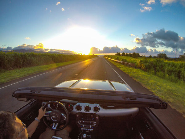 Driving into the sunset is done best in a awesome sports car. Adventure Car Car Interior Convertible Cruisin Driving Ford Ford Mustang Having Fun Hawaii Journey Mustang Oahu On The Road Open Top Outdoors Road Self Portrait Sports Car Sunset The Drive The Way Forward Travel USA Finding New Frontiers Long Goodbye Paint The Town Yellow Second Acts