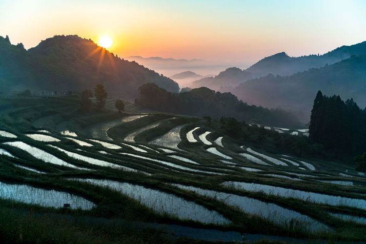 Scenic view of terraced fields against sky during sunset