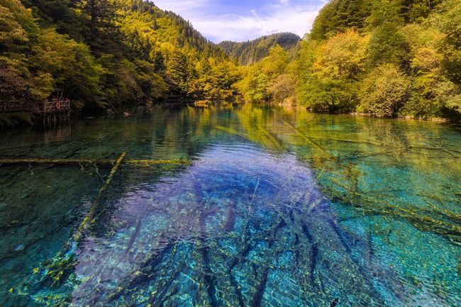 Tree Scenics Nature Beauty In Nature Water Tranquil Scene Tranquility Outdoors Forest No People Day Lake Autumn Mountain Travel Destinations Sky JiuZhai Sichuan Province China Landscape Landscape_Collection