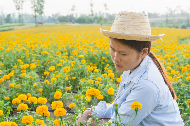 Marigold Portrait Flower Marigold Flower Farmer Selective Focus Lifestyles Outdoors Nature Plant Leisure Activity Care Check Hat Yellow Flowering Plant Growth One Person Beauty In Nature Field Clothing Real People Freshness Land Day Fragility Waist Up Sun Hat Flower Head