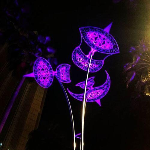 WHPnightlights illuminated Waubulan Jalanjalan Caricahayamalam Cities At Night