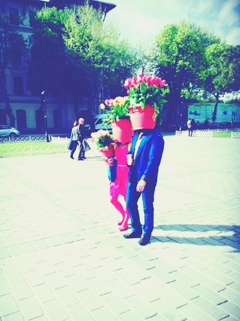 Check This Out Flowers Flowerheads Family Sultanahmet Colour Of Life