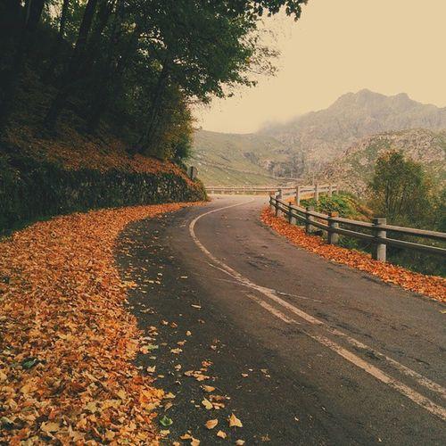 Hello Autumn . Beirabaixa Manteigas Serradaestrela road mountains