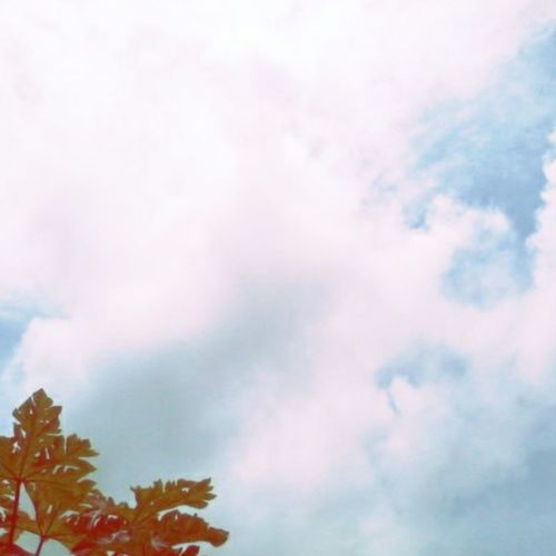 enjoy ur weekendWhen the cloud is moving $unnyWindy cloudylovelysundaynatureloverpeacefulenjoyinstadailyinstamydayinstagraminstaphototagsforliketgLERSTagsthzfortaginstaplacebestphotokeeprelaxfortomorrow ^_^