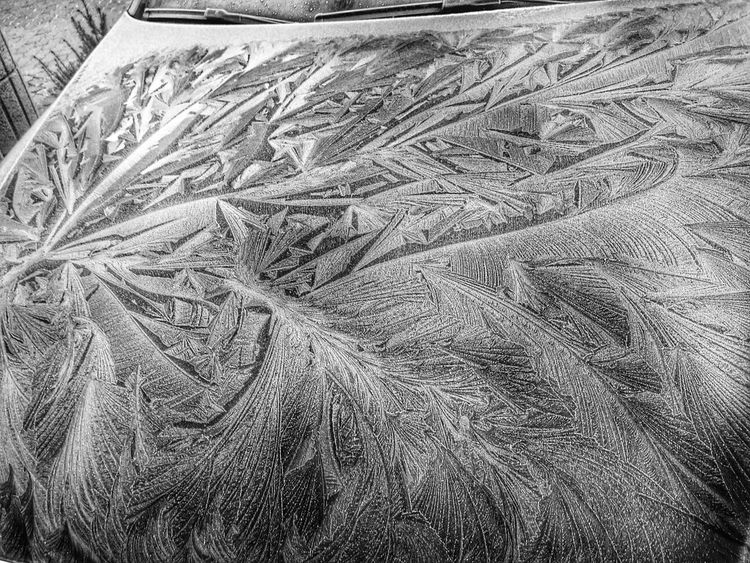 Ice painting on the hood Ice Painting Winter White By CanvasPop WheaterPro: Your Perfect Wheater Shot