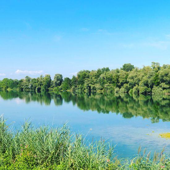 Plant Sky Lake