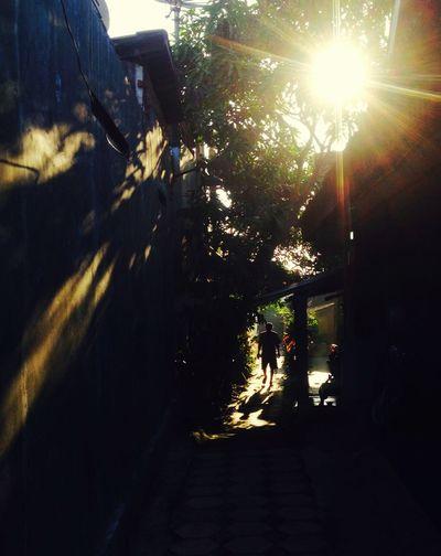 16.21 #streetphotography #streetphotographyindonesia #salatiga Sunlight Nature Plant Tree City Transportation Mode Of Transportation Street Shadow Outdoors Day Sun