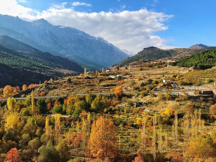 Autumn Mountain Beauty In Nature Sky Scenics - Nature Plant Cloud - Sky Tranquility Environment Tranquil Scene Growth Landscape Tree Nature Day Land Mountain Range No People Non-urban Scene Idyllic Outdoors