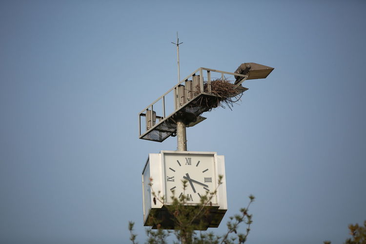 Low angle view of weather vane against clear sky