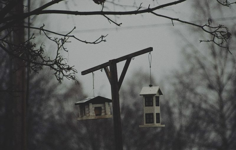 I'd live there. EyeEmNewHere Winter Analog Bird House