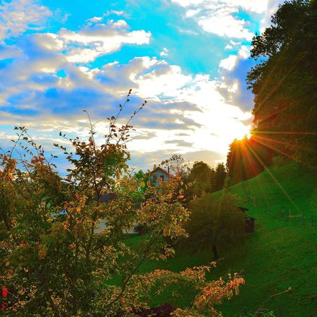 Taking Photos Relaxing Awesome Amazing Colorful Picture Switzerland Sunset Sunset_collection Glitch