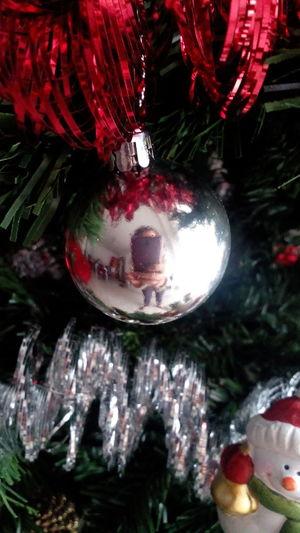 Me Home Christmas Time Christmas Tree Stupid Moment Fun Reflection