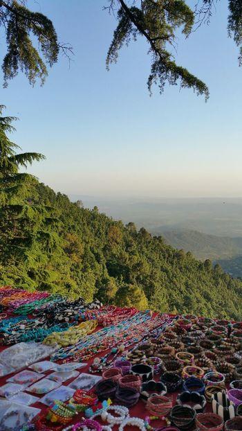 Look at those valleys. Mcleodganj Dharamshala Mountains Valley Himalayas Himachalpradesh India Dharamsala McLeod Ganj McLeod Gunj