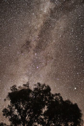Learn & Shoot: After Dark Nature Photography Natural Patterns Stars Starry Night Milkyway Bright Night Amazing_captures Amazing Sky Canon Sigma 30mm Night Sky Outback Sky Outback Australian Sky Australian Bright Sky Overnight Success