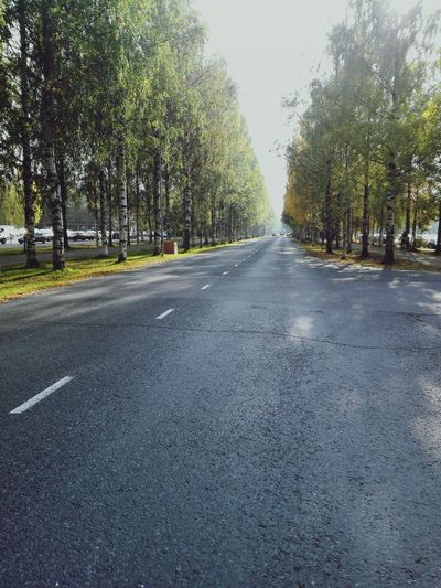 Road The Way