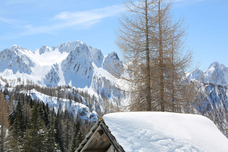 landscape with withe mountains and the roof of a small hut in winter Alpine Chalet Italia Roof Snow ❄ Snowed Tarvisio Travel Alps Beauty In Nature Cold Temperature Hut Italian Italy Lanscape Monte Lussari Mountain Nature No People Outdoors Snow Snow On The Roof Snowing Tree Winter