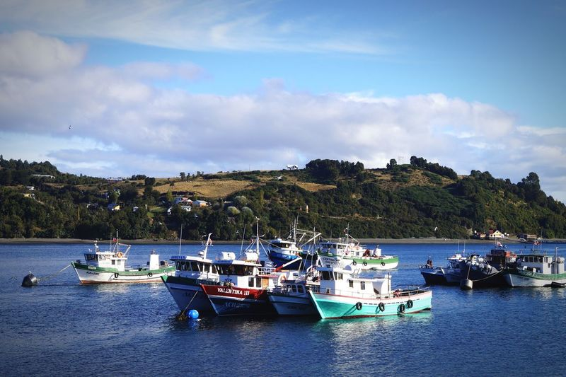 Botes Chiloe