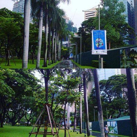 Hello Ayala Triangle Gardens! 😊