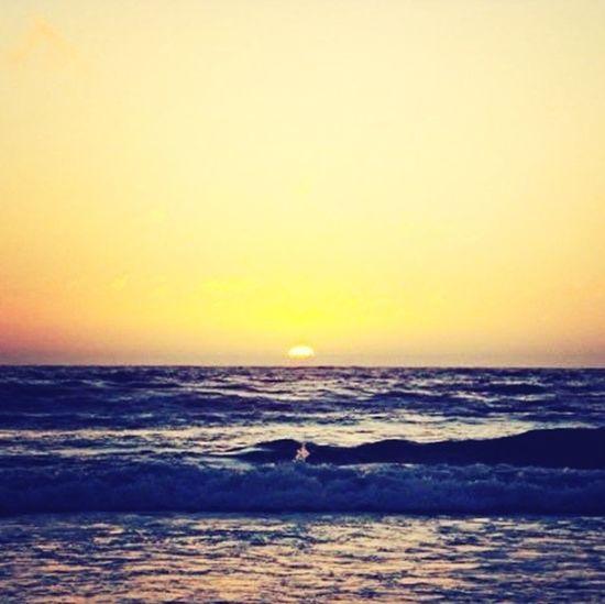 #sunset #casuarina #nature #beach