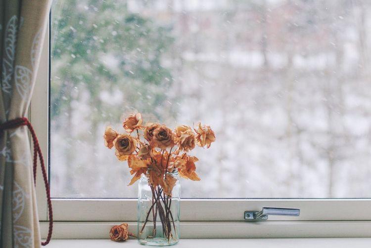 Vase On Window Sill