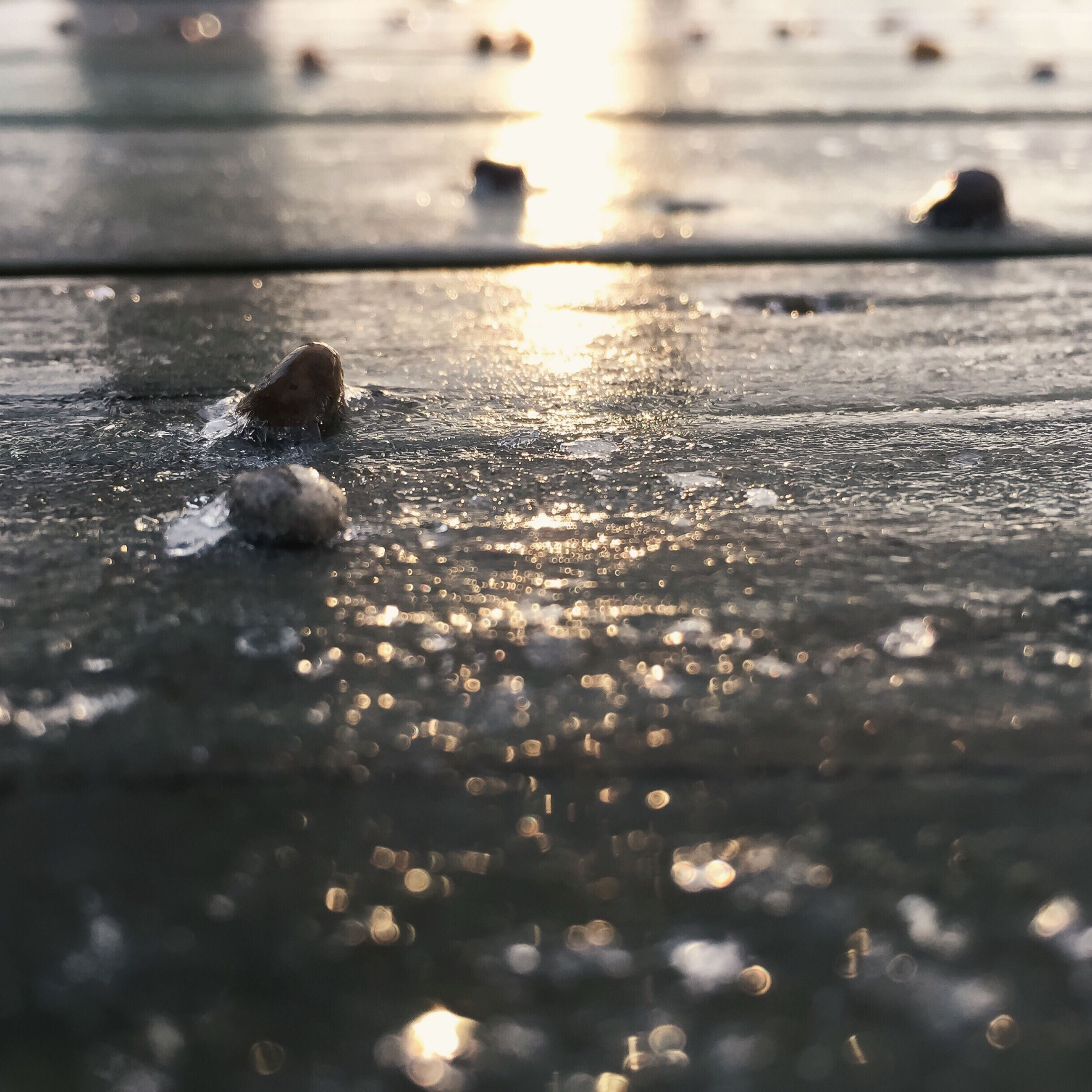 water, reflection, sunset, wet, surface level, selective focus, nature, sea, tranquility, sunlight, beach, sun, outdoors, beauty in nature, no people, close-up, focus on foreground, tranquil scene, scenics, waterfront