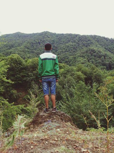 Forest Azerbaijan Ismayilli Mountain