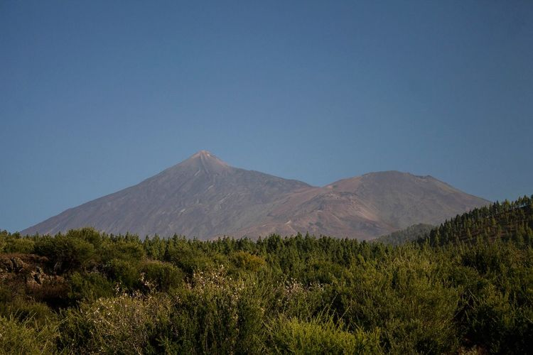 Teide y pico viejo Tenerife Teide National Park Canon 1100D 18-55mm Nature Tree Mountain Nature Reserve Sky Landscape Volcanic Landscape Volcano Volcanic Crater Geology Active Volcano