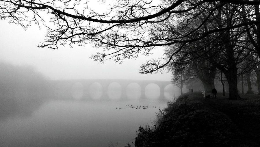 Bridge in the mist Weather England Hexham Tynedale Blackandwhite Monochrome