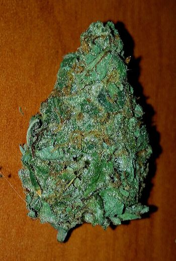 SMOKE WEED EVERYDAY 420smokers Weed