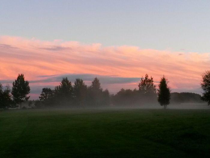 Evening Sky Evening Fog In Växjö Sweden