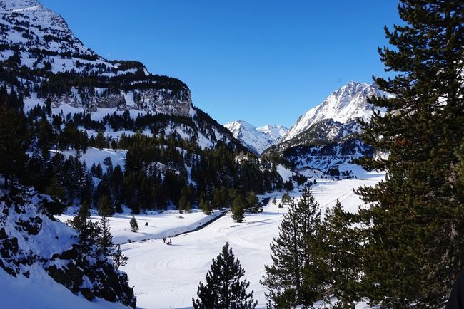 Snow Winter Snow Winter Mountain Cold Temperature Pinaceae Tree Mountain Range Winter Sport Travel Destinations