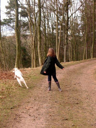 Playing Walking In The Woods Walking The Dog Daughter Dog Playing Games Childhood Happy Memories Having Fun Yellow Labrador Rural Rural Scene Let Your Hair Down