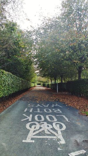 Road sign on footpath by trees