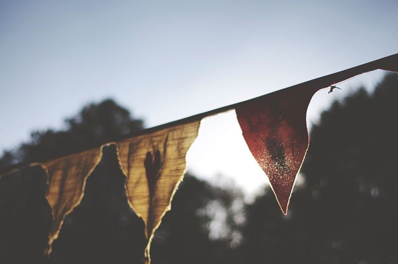 Flag No People Day Outdoors Clear Sky Sky Close-up Tree Medieval Middle Ages Fanfare Circus Sun Daylight