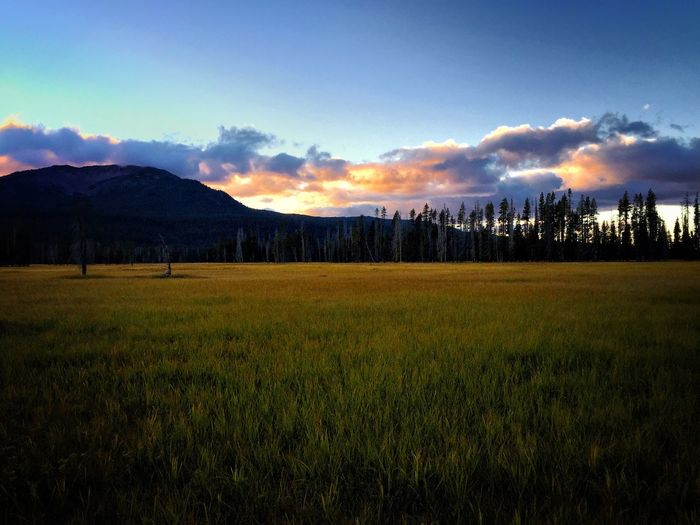 Meadow near the lake Landscape Tranquility Tranquil Scene Field Scenics Sunset Beauty In Nature Blue Nature Countryside Non-urban Scene Solitude Growth Sky Remote Cloud Grassy Calm Outdoors Cloud - Sky