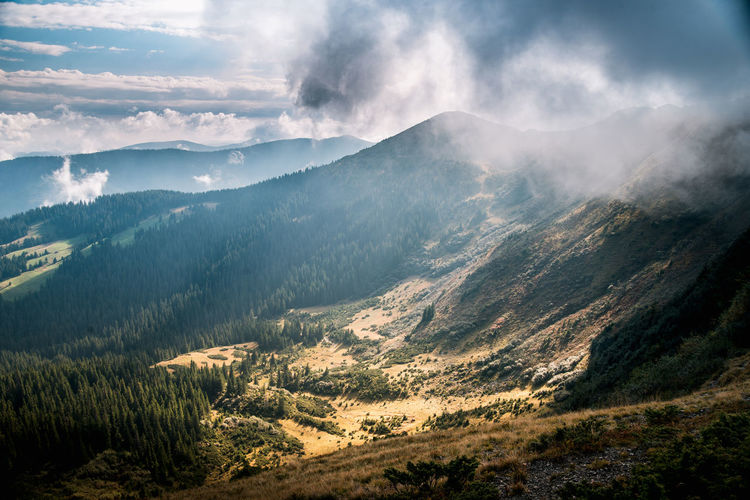 Mountain valley during sunset. Natural summer landscape Mountain Scenics - Nature Beauty In Nature Tranquil Scene Tranquility Mountain Range Environment Cloud - Sky Landscape Sky Non-urban Scene No People Nature Remote Idyllic Land Day Outdoors Plant Mountain Peak Coniferous Tree