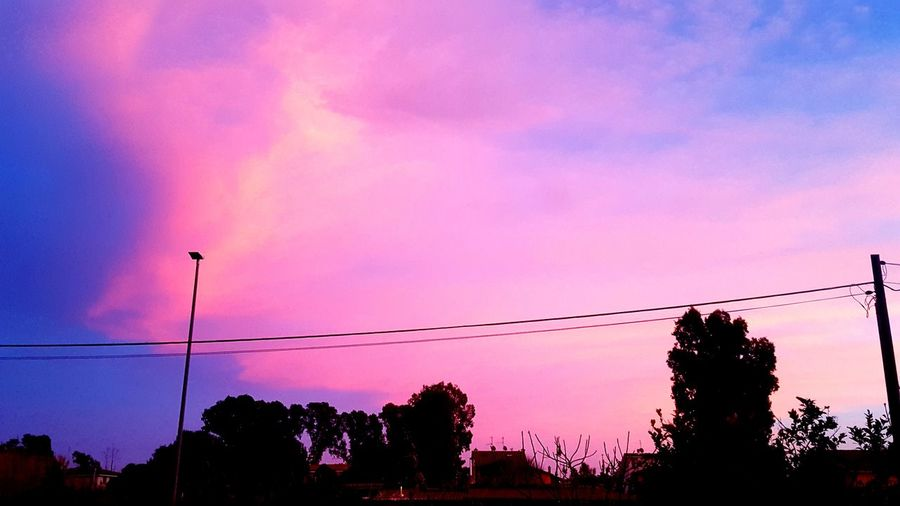 Rosesky Beauty In Nature Beauty Nature Nature Photography Trees Colors Clouds Clouds And Sky Tree Sunset Electricity Pylon Silhouette Electricity  Cable Technology Pink Color Multi Colored Sky Dramatic Sky Atmospheric Mood Moody Sky Atmosphere Lightning