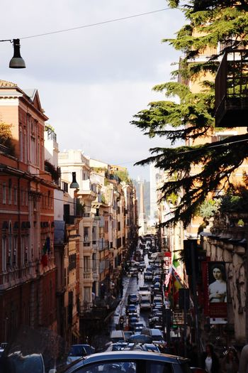 Trees Italy 🇮🇹 Rom Rome Streets Of Rome Architecture Building Exterior Car Built Structure City Street Transportation Day The Way Forward Outdoors Sky An Eye For Travel Moving Around Rome Adventures In The City