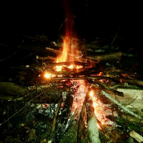 Heat - Temperature Night Nature Fire Feuer Lagerfeuer Forest Chill Mode