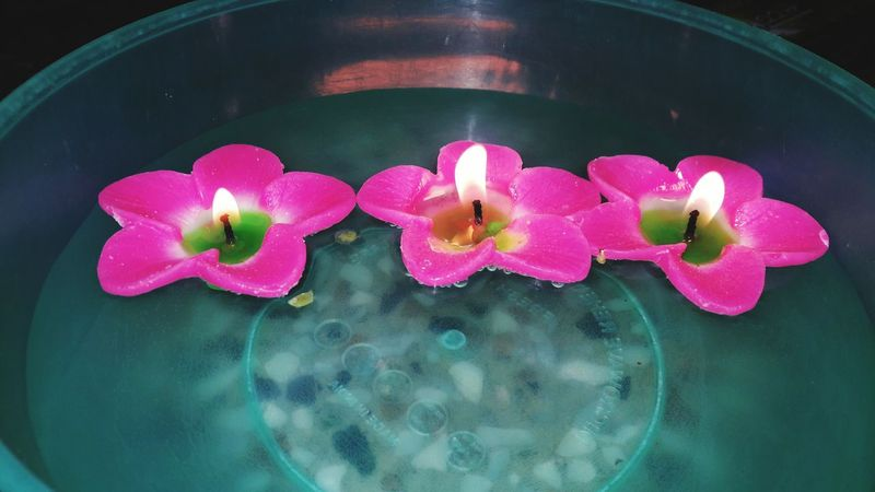 Diwali diyas Flower Candle Water Freshness Close-up Pink Color Flame Burning Heat - Temperature Illuminated Candle Flower Healthcare And Medicine Pink Color Water No People Indoors  Freshness Close-up Hygiene Birthday Cake Day