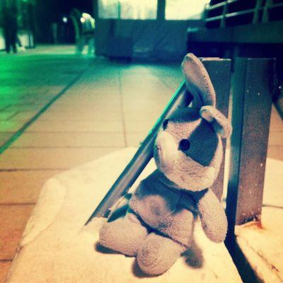 Un enfant ne dormira pas bien ce soir.. Perdu Doudou Seul Au Monde Triste