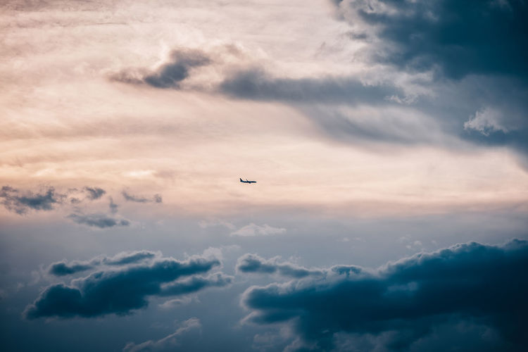 Plane Plane Air Vehicle Beauty In Nature Bird Cloud - Sky Flying Low Angle View Mid-air Nature No People Outdoors Scenics - Nature Sky Sunset Tranquil Scene Tranquility Vertebrate