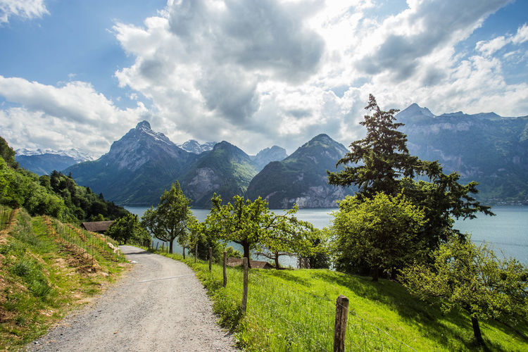 Tells Platte, Lake Lucerne Beauty In Nature Cloud - Sky Day Lake Life Landscape Luzern, Lucerne. Mountain Mountain Range Nature No People Outdoors Road Scenics Sky Switzerland Alps Tells Platte Tells Platte, Lake Lucerne The Way Forward Tree Vierwaldstättersee