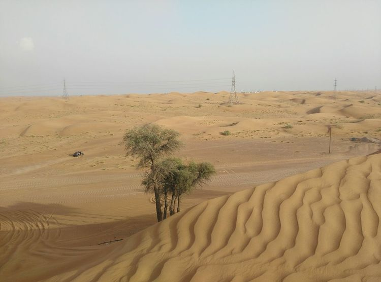 Sand Sand Dune Landscape Desert Arid Climate Scenics Nature Beauty In Nature Day No People Travelphotography Travel Sky