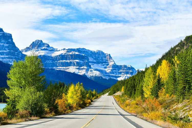"The road 93 beautiful ""Icefield Parkway"" in Autumn Jasper National park,Canada Banff  Mountain Western 93 Autumn Beautiful Icefield Parkway North America Road Canada Highway Icefield Parkway Jasper National Park Landscape Outdoors Summer Sunny Day Western"