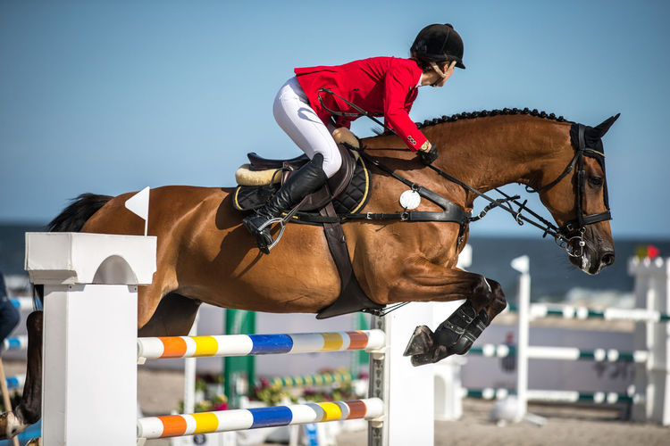 Full length of woman riding horse over obstacles