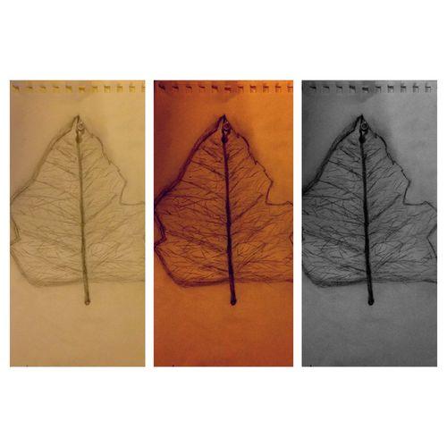 Draw Vesicle Loveit 😍😌😊