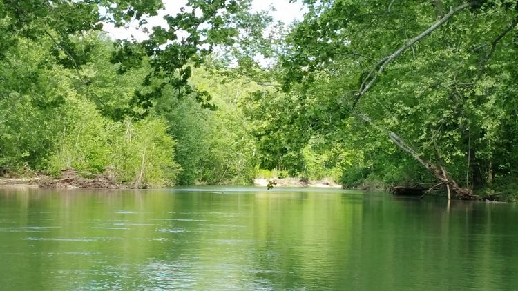 Missouri Waterways Kayaking In Nature Kayaking River Love River Life River Riverbank Green Beauty In Nature Outdoors Makesmesmile Nature Perspective Good Life Happy Love