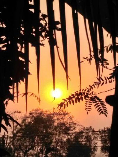 Sunset Evening Fav_scene Loving_this 😍😍😍😍 First Eyeem Photo